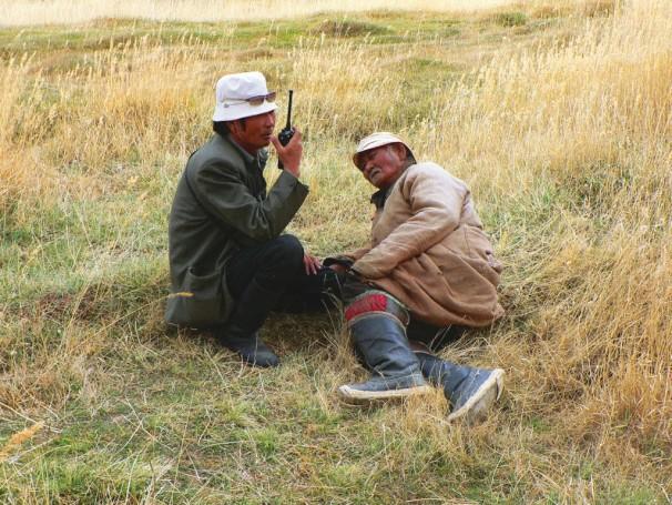 Beobachtung des Gobi Bären (Maazalai)