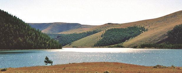 Zu Pferd durch die Steppe und die Bergwelt am See (15 Tage)