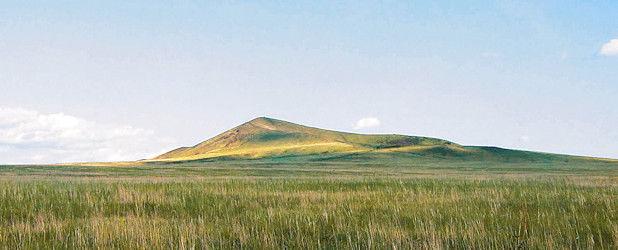 Vogelarten der östlichen Mongolei (22 Tage)