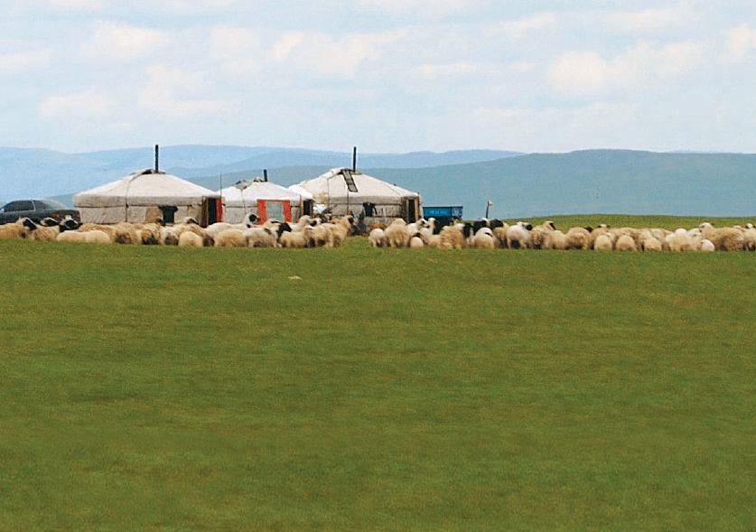 Mongolei und Innere Mongolei (22 Tage)