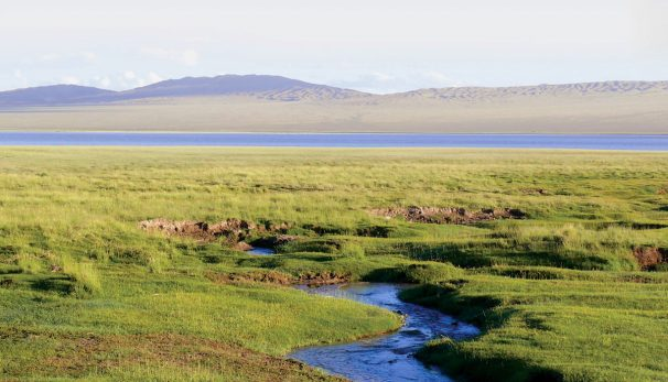 Mongolei-Russland-China
